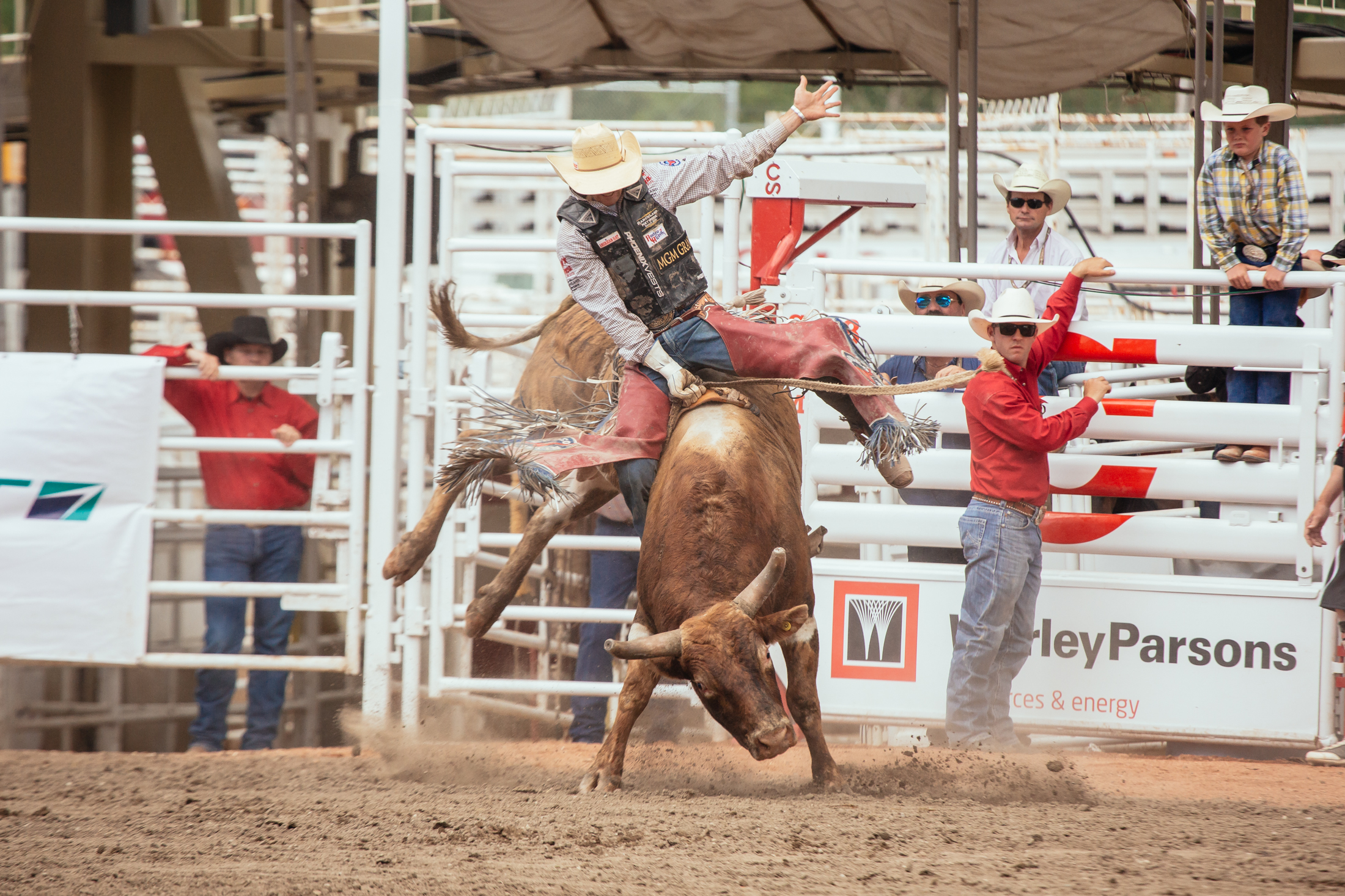 Calgary Stampede And Lovely Pei A Tale Of Two Great
